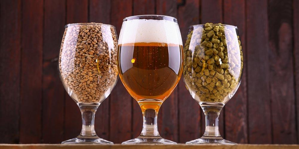 копия любимого сорта пива
